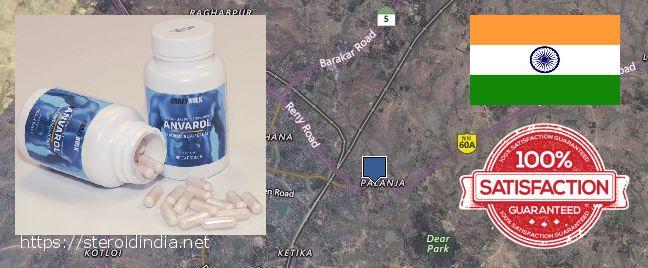 Purchase Anabolic Steroids online Puruliya, India
