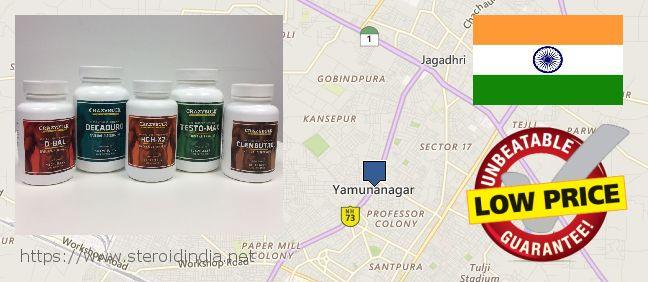 Where to Buy Anabolic Steroids online Yamunanagar, India