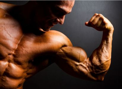 Best Place to Buy Steroids in India