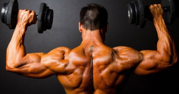 Where to Buy Steroids in Chhatarpur