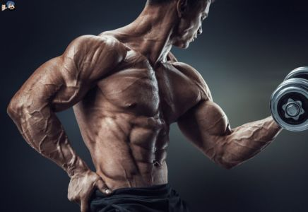 Where to Buy Steroids in Bahadurgarh