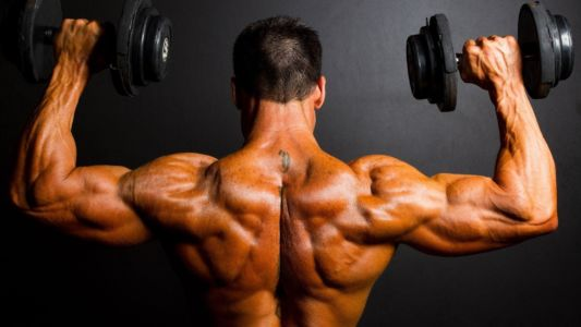 Best Place to Buy Steroids in Ambala